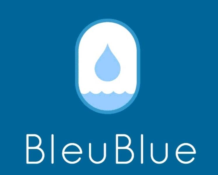 bleublue banner 2